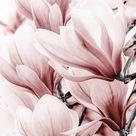 BLCKART ROSE LOVE WALLPAPER V