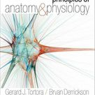 Principles of Anatomy and Physiology by Bryan Derrickson and Gerard J. Tortora (2013, Hardcover) for sale online   eBay
