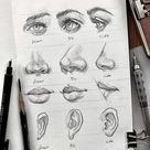 Portrait Drawing Guides and Inspiration | Bein Kemen
