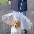 Hunde Regenschirm