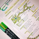 Anatomy Study Notes!!