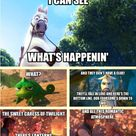 Lion King Funny