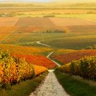 Hungary Tourism | Places to Visit in Hungary: TripHobo