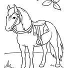 337 Pferde Ausmalbilder zum kostenlosen Ausdrucken