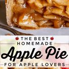 The Best Homemade Apple Pie from The Food Charlatan
