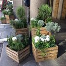 Gepflanzte Holzkisten - Blumen / Garten - Garten ideen - Blumen