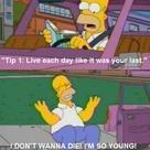 Honest Homer - Funny