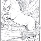 FunnyColoring / Animals coloring pages / Horses / Horse 5