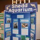 History Fair - Display Board Examples