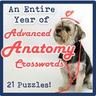 An Entire Year of Advanced Anatomy Crossword Puzzles (Bundle!)