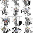 The Ultimate Shoulder Workouts Anatomy. From the side, the front, and rea