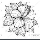 Fleur d'hibiscus d'Hawaii, feuille. OEuvre d'art: image vectorielle de stock (libre de droits) 339236351