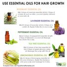 7 Essential Oils Natural Agents To Promote Hair Growth Top 10 Home Remedies