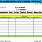 Top 10 Excel Status Report Template