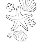 Starfish and Shells coloring page | Free Printable Coloring Pages