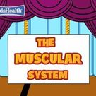 Movie Muscular System for Kids
