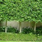 Design Ideas - Kilby Park Tree Farm