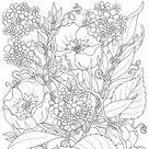 Anti-stress kleurplaten zomer : Bloemen 3