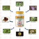 Gunatit Herbal Fema Healthcare
