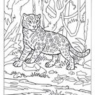 Mammals Book Four « Animal Coloring Pages for Kids
