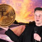 Elon Musk Sparks Bitcoin Buying Rumors On Twitter | CryptoGazette - Cryptocurrency News