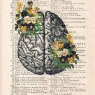 Anatomy Brain Flower Anatomy Print Human Anatomy art science   Etsy