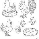 Coloriage gratuit, une poule, un coq, des poussins