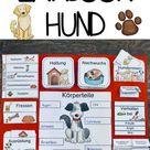 Paket Lapbook & Wissenskartei zum Hund – Unterrichtsmaterial im Fach Sachunterricht