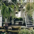 A jungle in your living room