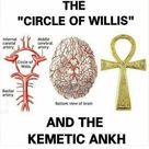 Ancient Secrets About The Vagus Nerve: Revealed