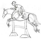 Pencils Ready? Draw a Jumping Show Horse