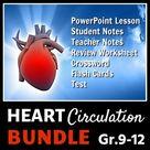 Heart Circulation BUNDLE