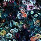 Als alles von falsch nach richtig lief,  #3DWallpaperflower #alles #als #falsch #lief #nach #...