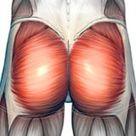 Sciatica - Causes, Treatment & Exercises for Sciatic Pain