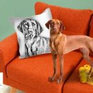 Custom Dog Pillow ,Hand drawing pencil sketch , Custom Pet Pillow, Dog Memorial , Pet Memorial,