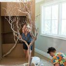 DIY Indoor Manzanita Trees