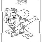 Paw Patrol coloring pages | Print and Color.com