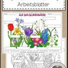 Frühblüher - Arbeitsblätter – Unterrichtsmaterial In Den