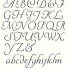 Clipart Alphabet Clipart Letters Italic Script Letters Vector Alphabet Uppercase Lowercase Flourishing Digital Alphabet