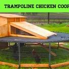 Old Trampoline