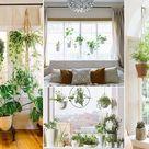18 Indoor Plants Bedroom Window Garden Ideas!