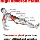 Reverse Planks That Help Strengthen The Core And Lower Body - GymGuider.com