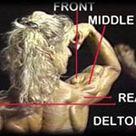 Shoulder Shockers: The Best 3 Exercises