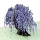 Cute Wisteria Arbor 3D Pop Up Greeting Card - Romantic, Private, Dreamy, Just Because, Thinking of Y