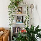 Plant filled shelf decoration