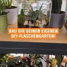 Zuhause selber machen: Deinen DIY Flaschengarten