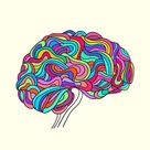 The Neuroscience of Building a Resilient Brain   The Best Brain Possible