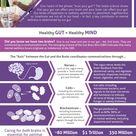 3 Powerful Ways To Boost Your Gut Health - Gardner Gut Gurus