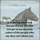 It is during the worst storms of your life that you get to see the true colors of the people who say