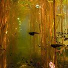 Water Tadpoles Underwater iPhone 8 Wallpapers
